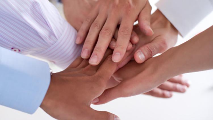colaboracion entre lideres superiores e intermedios
