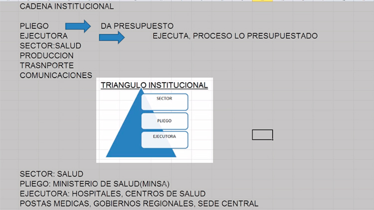 Módulo Presupuestal – Triángulo institucional